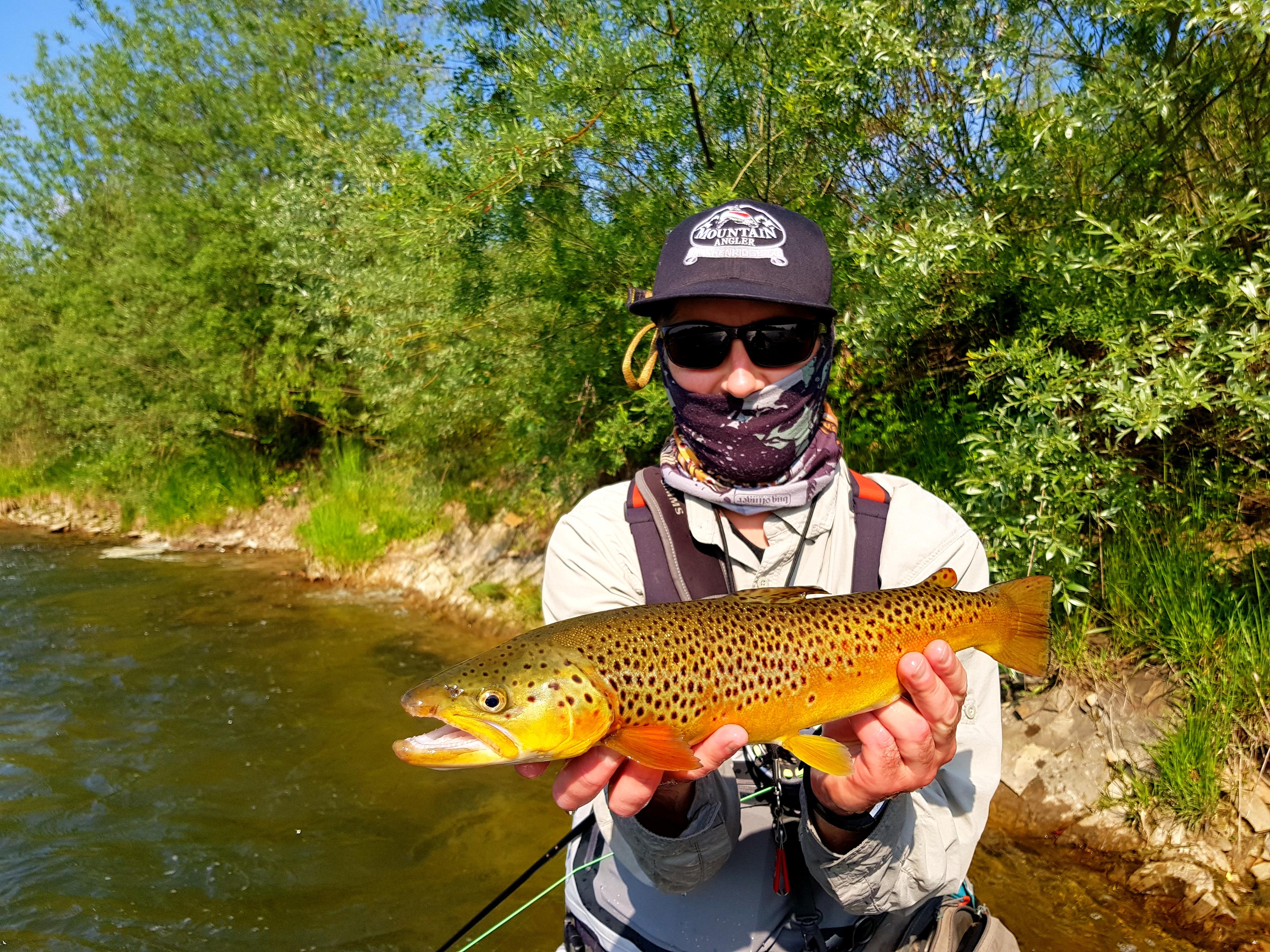 Hopper dropper method (dry &nymph) fishing & nice trout