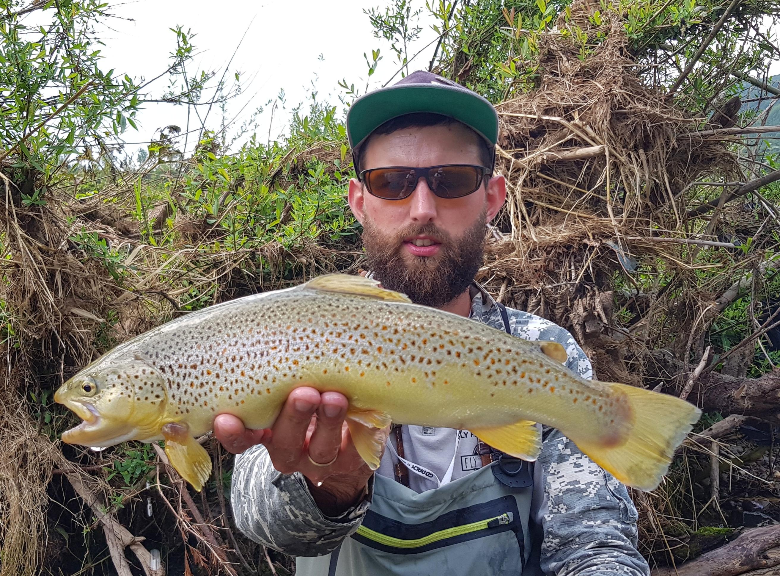 Bialka River - No kill zone & fat trout