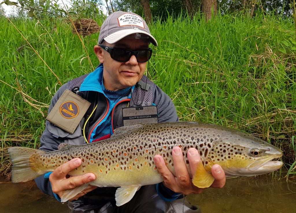 Big fat trout from the river - Dunajec River - Fly Fishing in Poland
