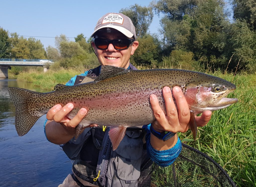 Rainbow trout from Slovakia - fly fishing in Slovakia Vah River