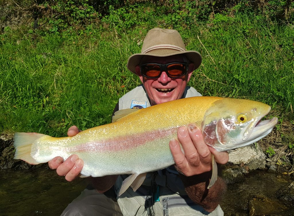 Very rare fish cought in the river. Strong fish