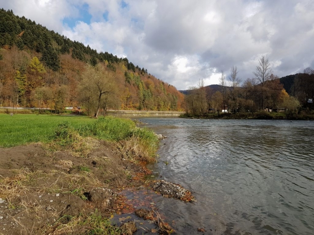 Dunajec River the best fly fishing in Poland - 11km no kill zone