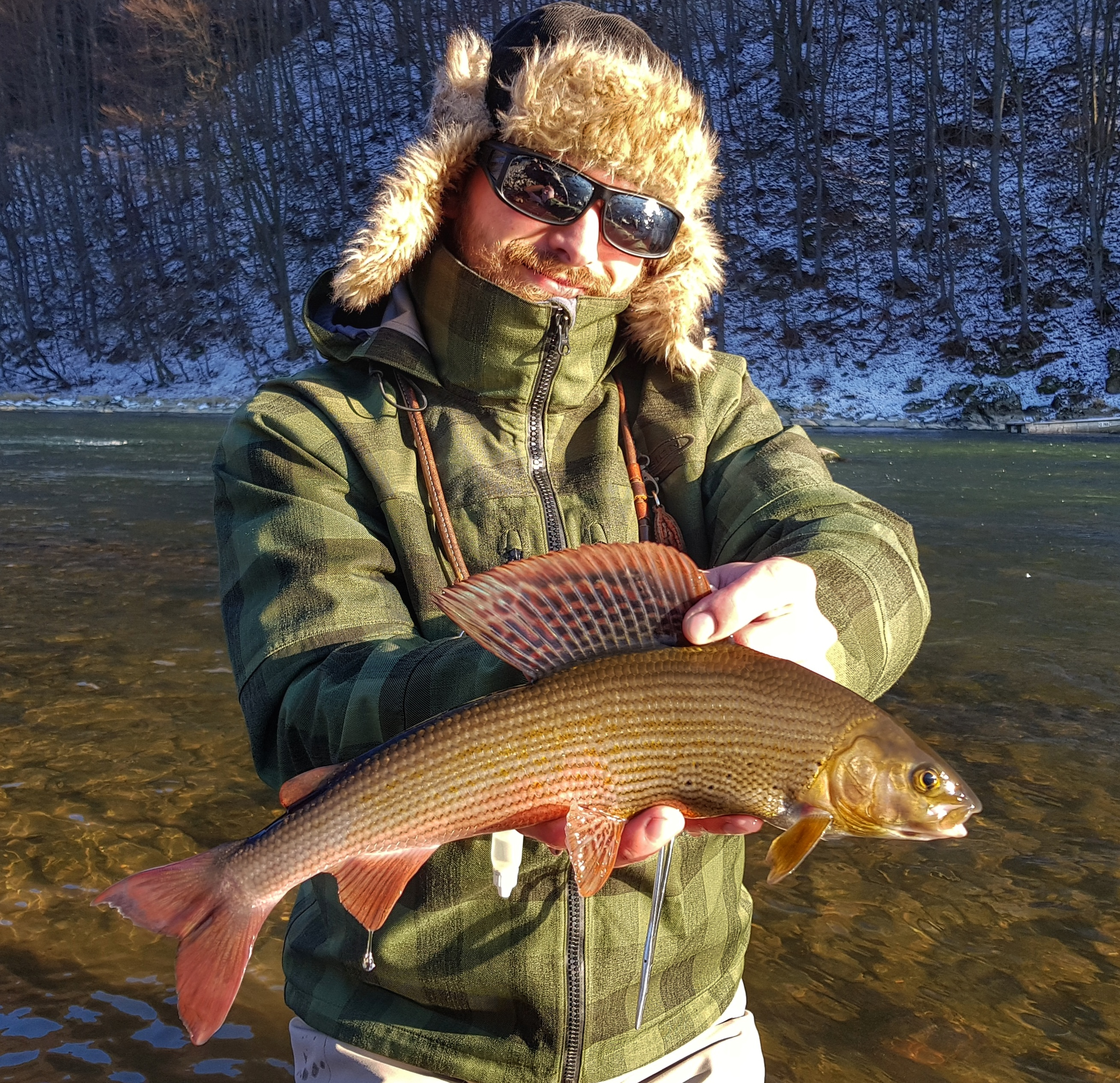 One more grayling from Dunajec River - fly fishing in Poland
