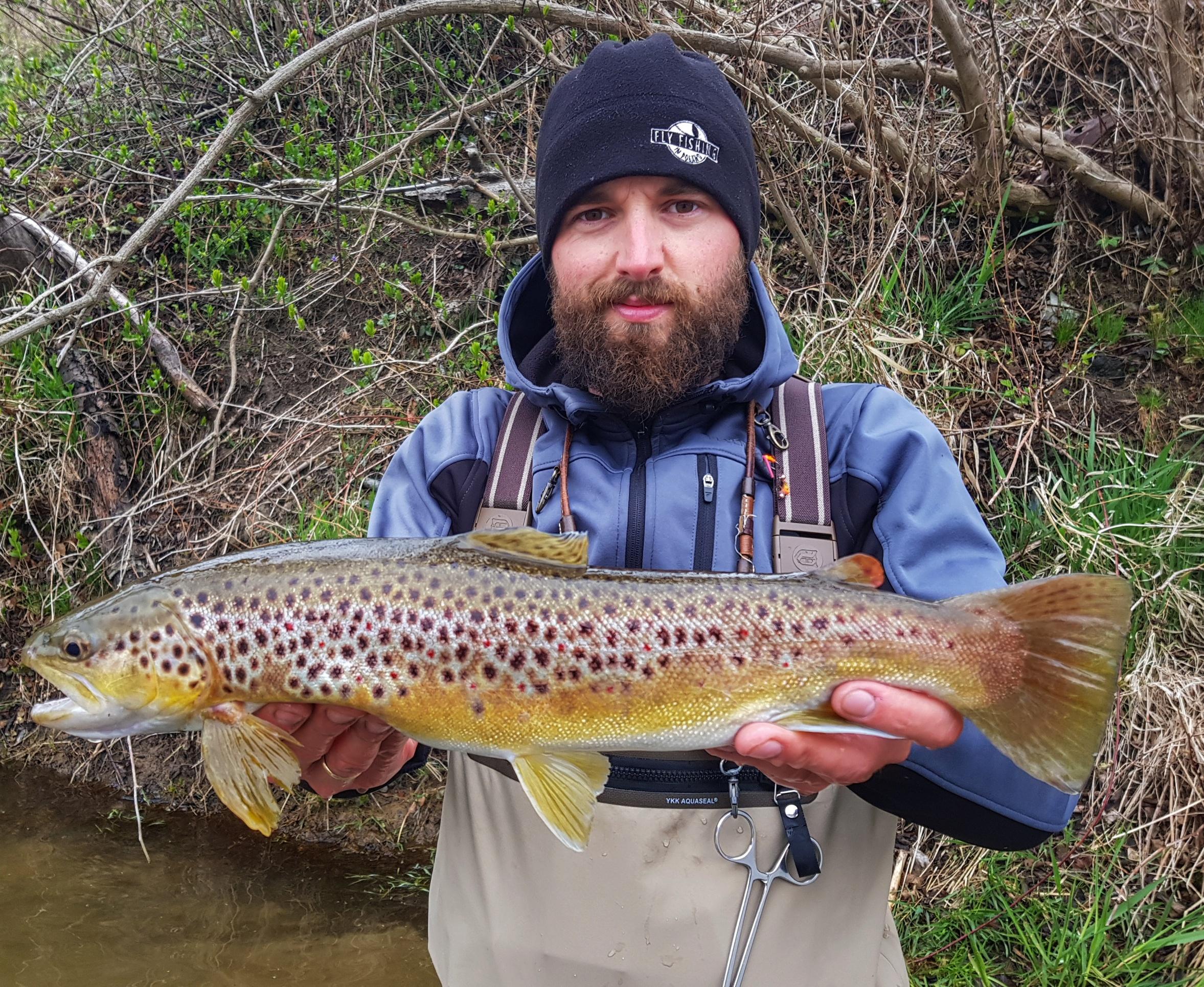 streamer light fishing Dunajec River - Poland fishing trips