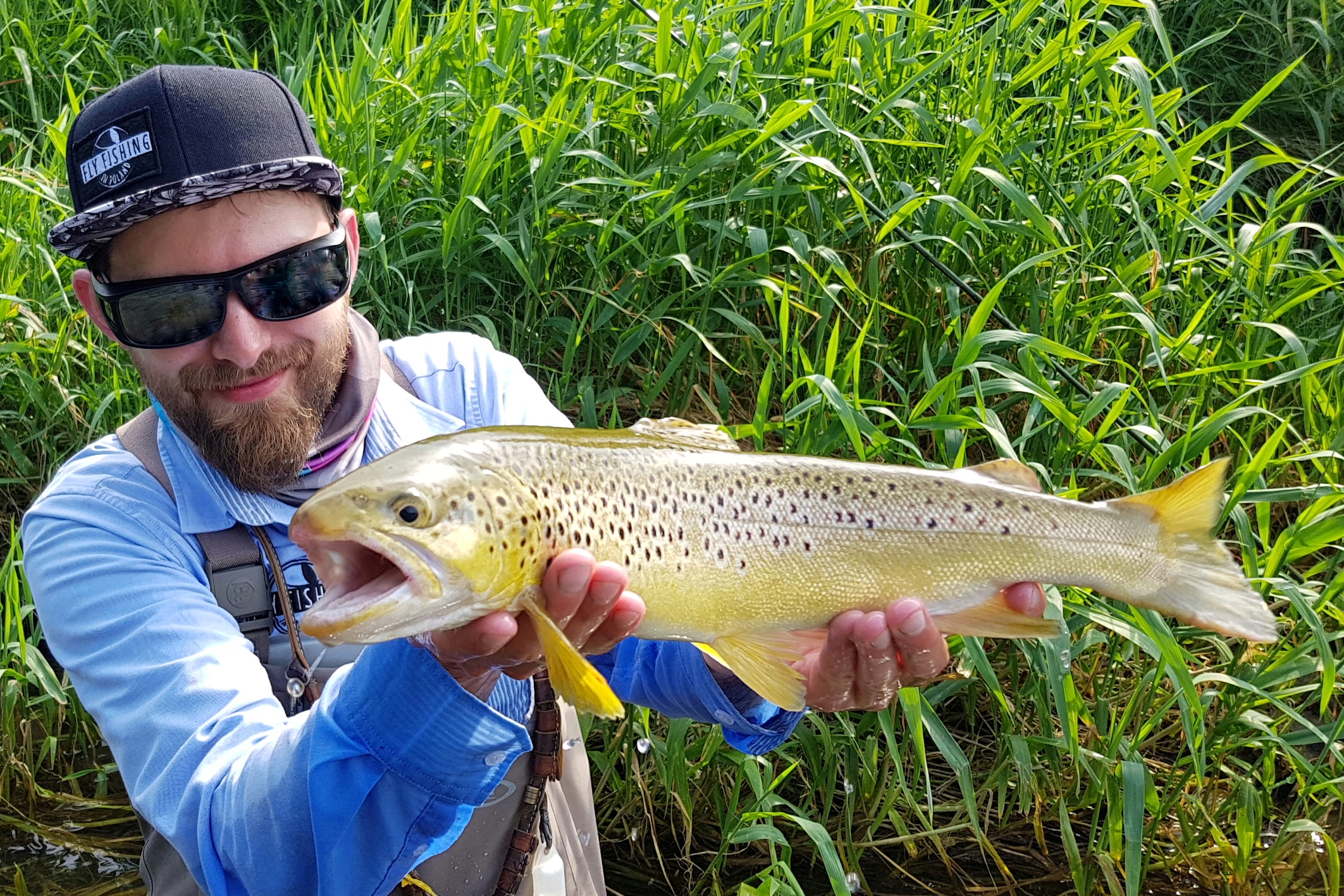 Fly Fishing in Poland - best guide in Poland, Brown Trout