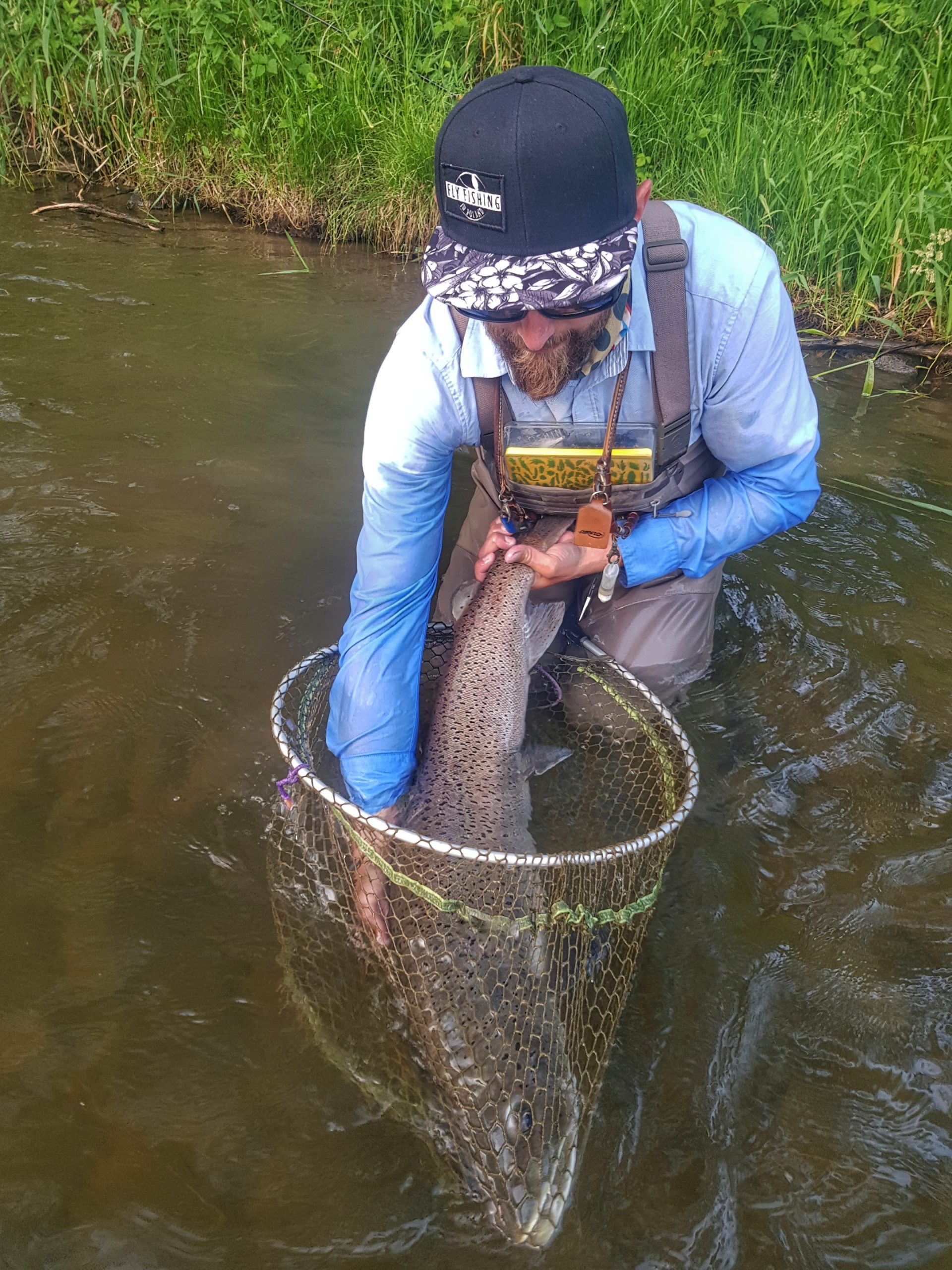 Good job guide - monster Hucho-hucho from Dunajec River, Poland