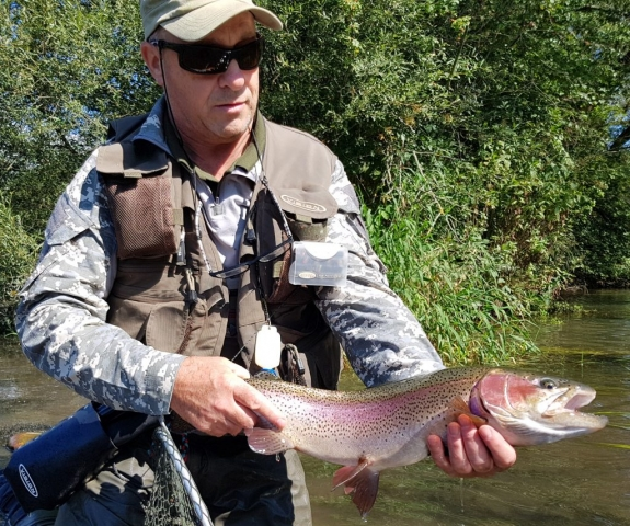 Trophy fish from trip to Slovakia - Vah River Besenova