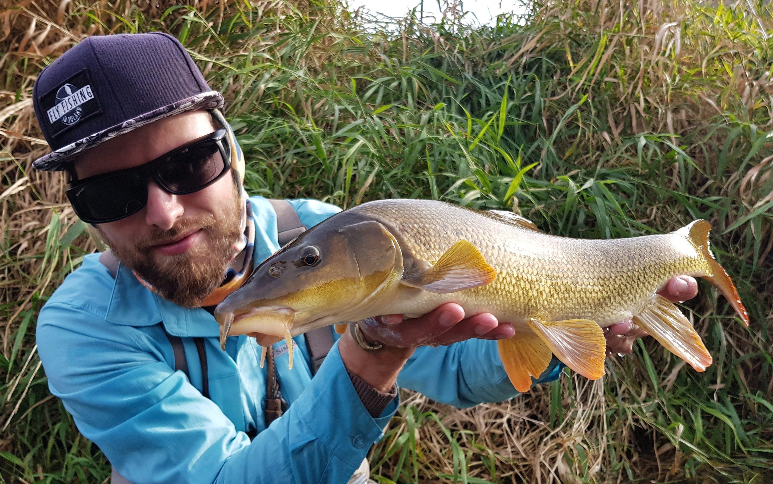 Barbel Fly Fishing, dry fly fishing ?