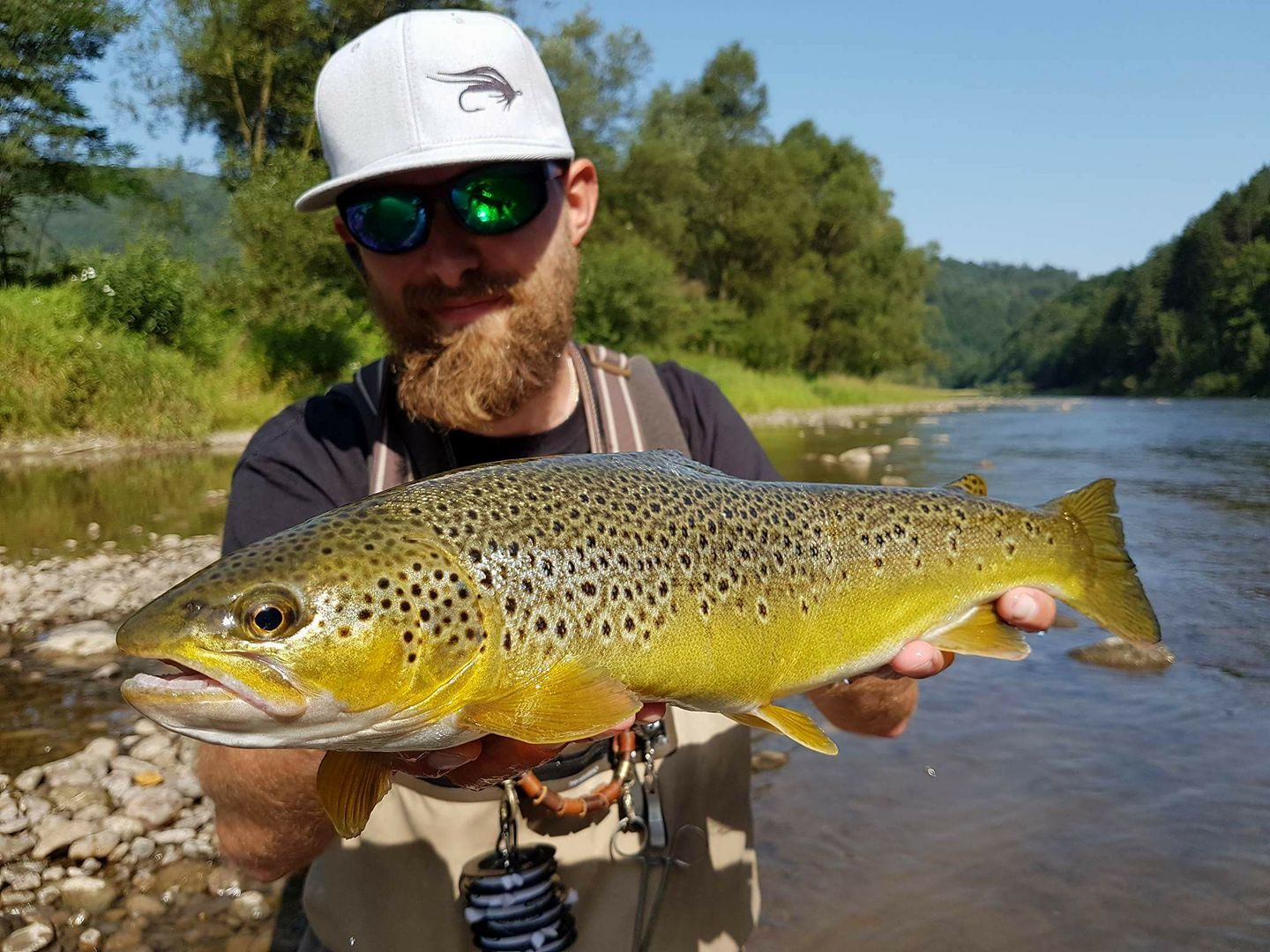 Fly fishing guide with nice trout Dunajec River - Poland