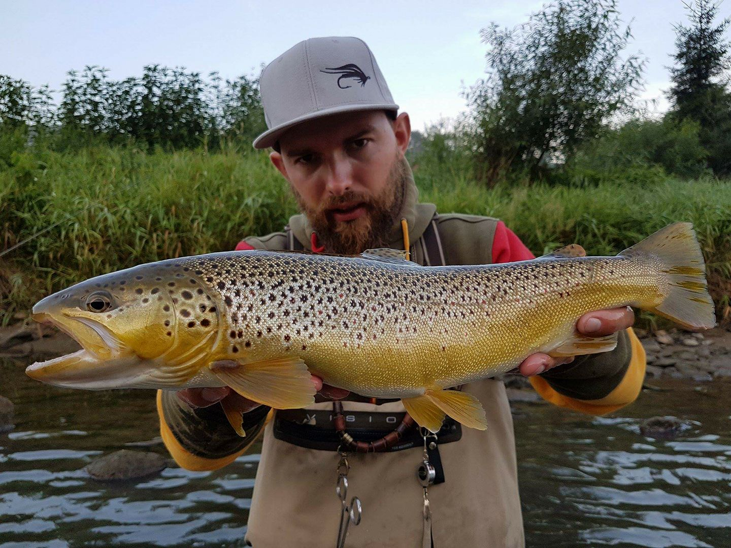 Vision rod helped a lot when catching tkat brown trout