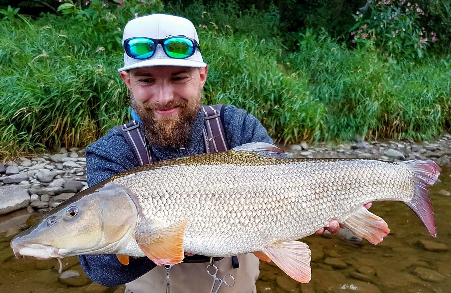 One of the biggest I cought - Fly fishing in Poland