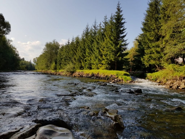 River which starts in Zakopane just under Tatry mountains Wild trout and grayling fishing