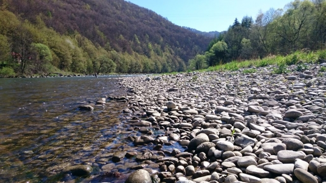 Great streamer fishing place - also good for Hucho-hucho - Dunajec River - Poland