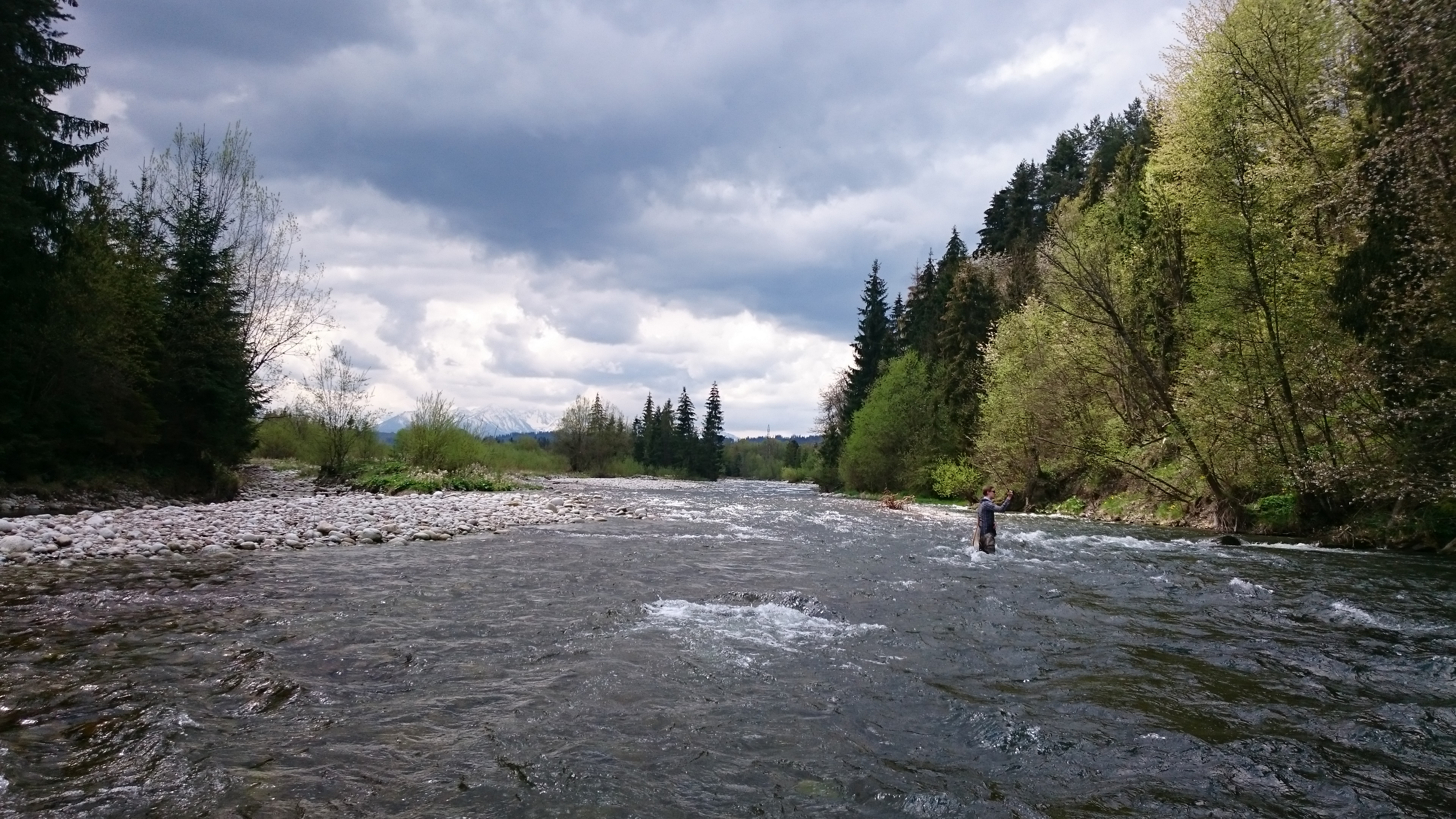 Wild River with wild trouts and graylings.