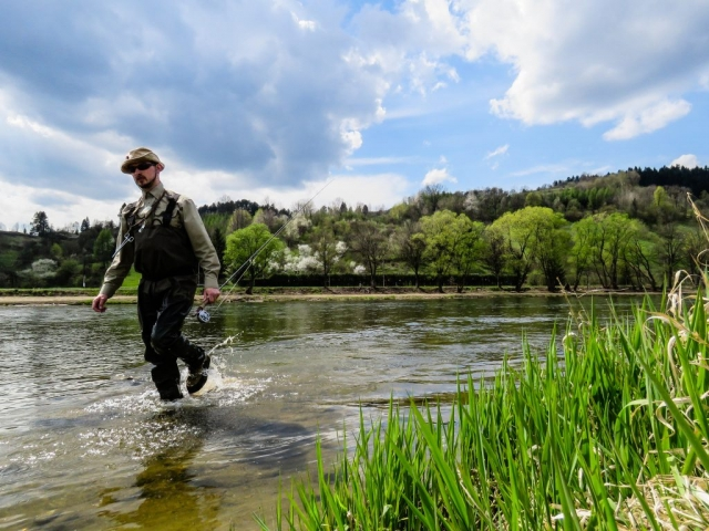 Great place for dry fly fishing in spring. Fly fishing in Poland