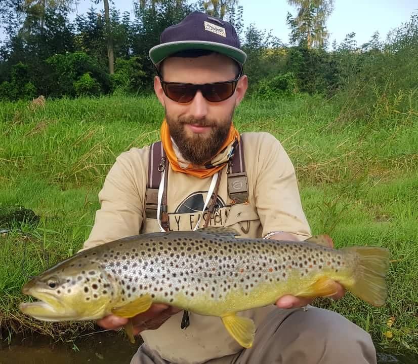 Wild brown trout fishing europe