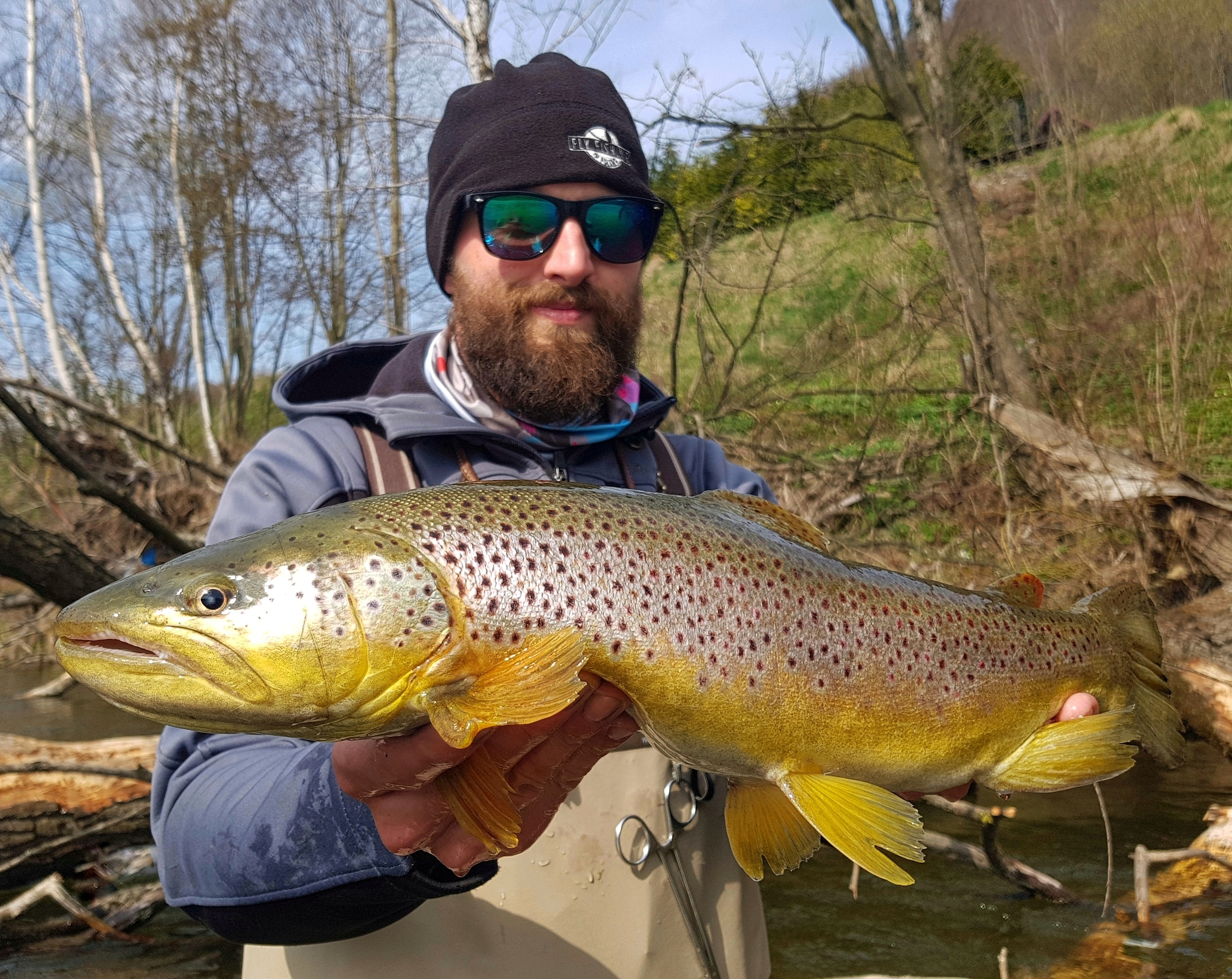 Big brown trouts in Europe. Dunajec River compare Ribnik fishing