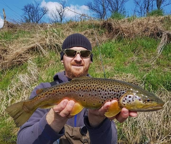 Beautifull brown trout you wont find it in Slovenia fly fishing