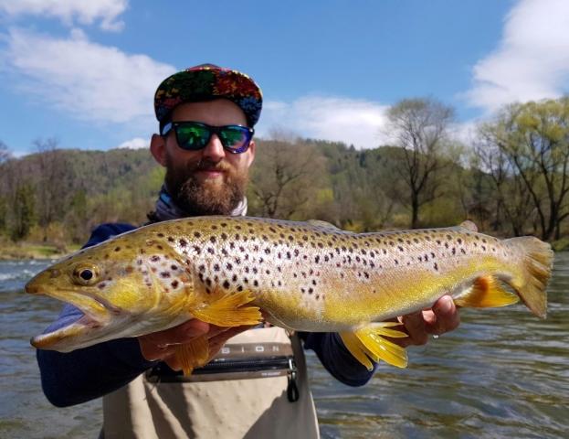Brown trout similar we catch in Bosnia Rivers - like Ribnik