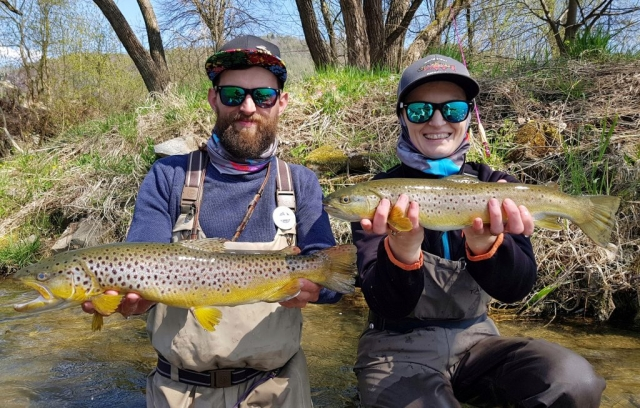 Double catch - Brown Trout Dunajec River (close to Austria Fishing)