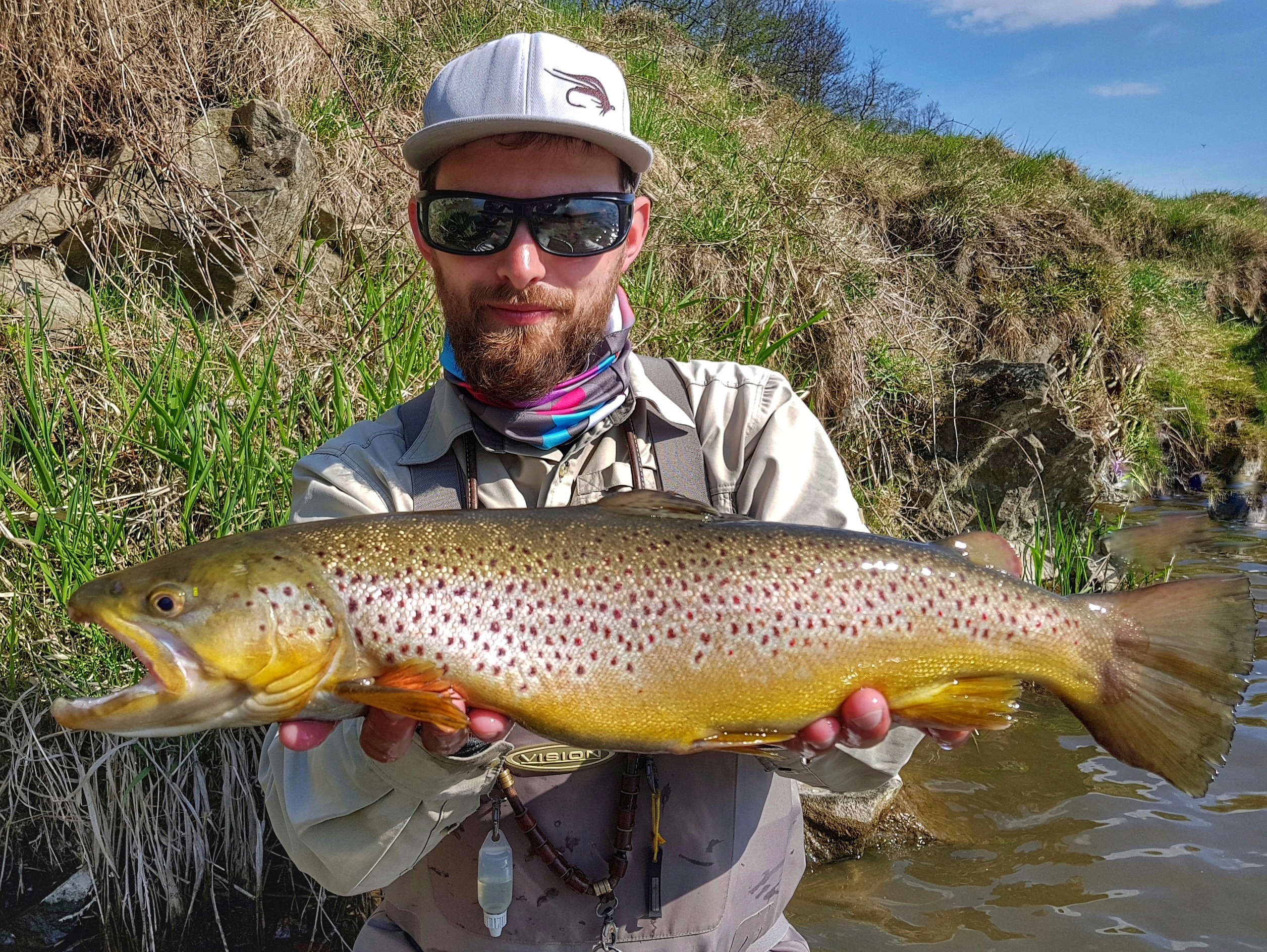 Nice Brown trout from Dunajec River - Fly fishing in Poland