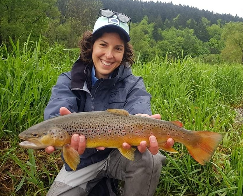 Nice Brow Trout - czech nymphing with heavy tungsten nymph
