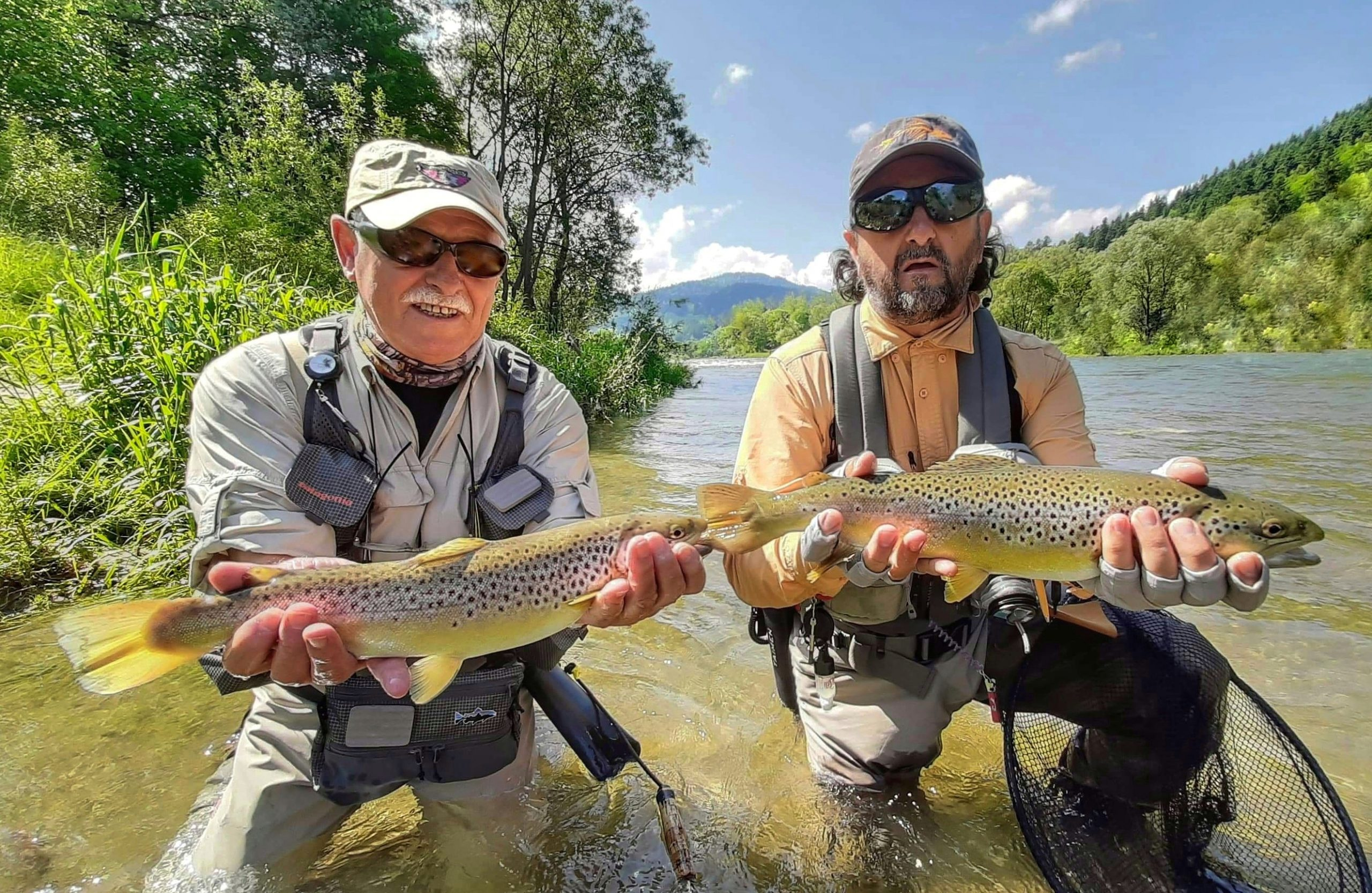 Streamer, dry fly fishing for trout - Poland