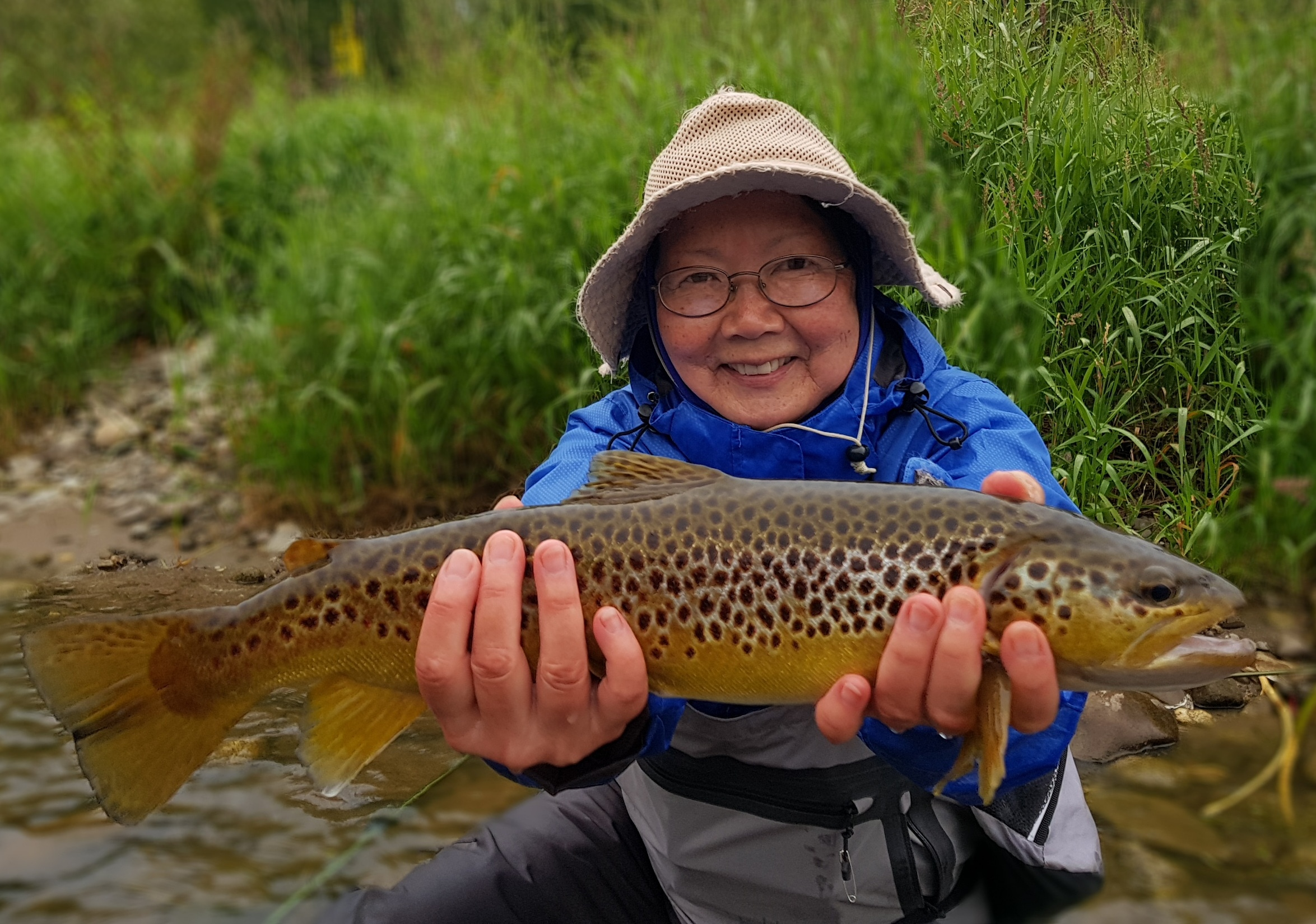 Wild river brownt trout fishing Poland - Europe