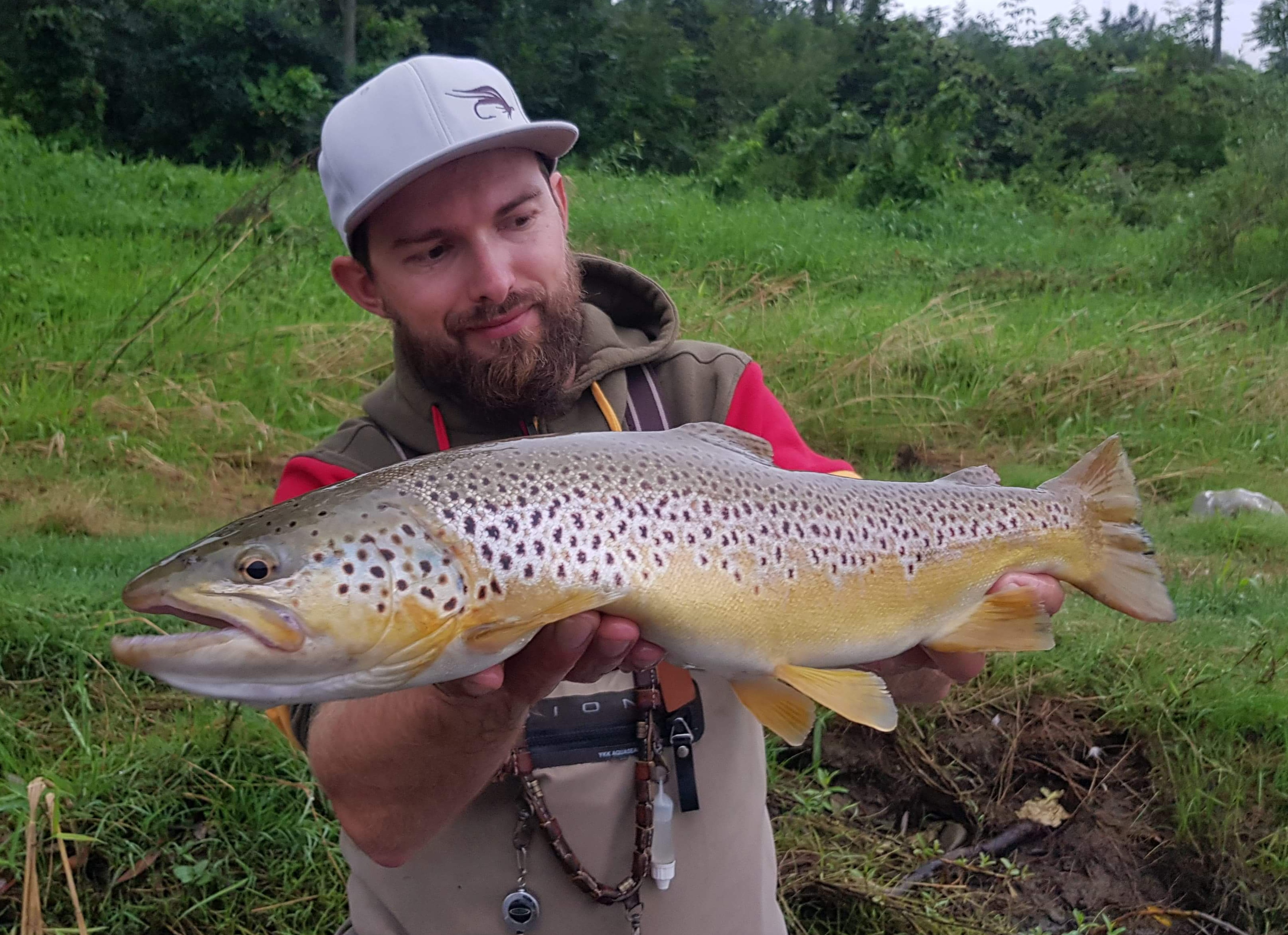 Streamer fishing and Brown Trout - lovely fishing day