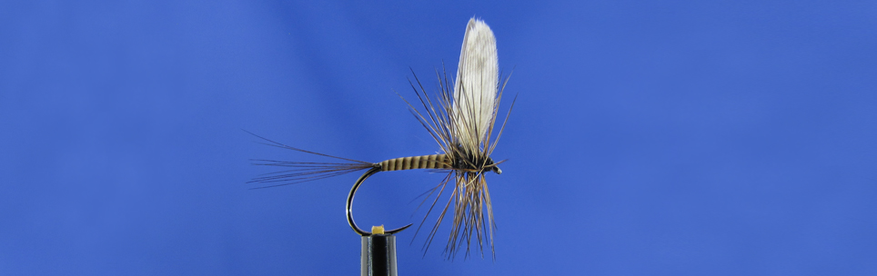 Akita hook, Quill, Metz Cape, Mallard wing fly tying workshop
