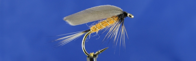 Yellow Sally variant, barbless hook, yellow Wapsi dubbing, Mallard duck wing