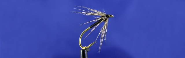 Black spider wet fly, peacock hearl, wet fly hook, partridge, UV glue