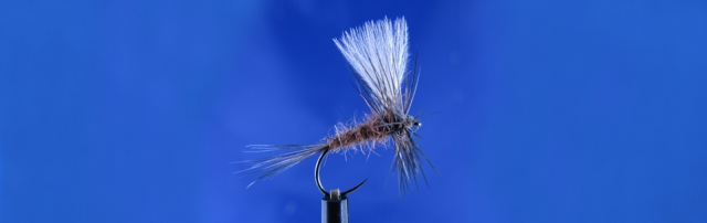 CDC dry fly, Hanak, Rabbit dubbing, Metz Hackle, CDC wing