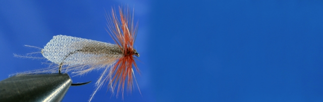 Caddis Dry, Caddis wing, brown Metz Hackle, CDC dubbing