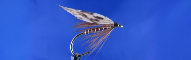 Wet fly for trout, gold wire, brown thread, Brown hen Hackle, Pheasant wing