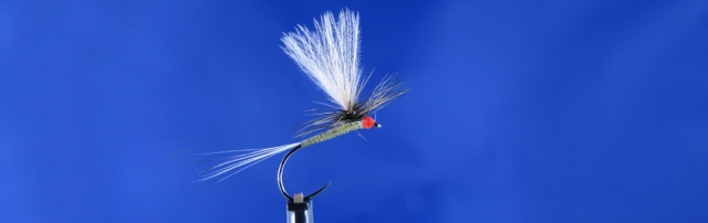 Olive Dun, dry fly for trout Fly Fishing in Poland