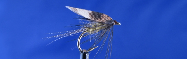 Olive wet fly, March Brown, mallard brone, olive dubbing, gold ribbing, black hen, pheasant hen wing.