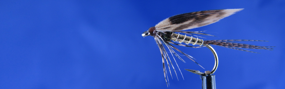 Wet fly for trout, golden body, mallard bronze tail, peacock hearl, Pheasant wing