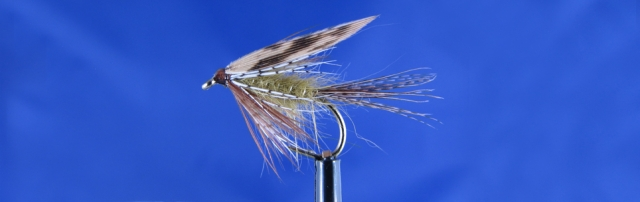 Olive wet fly March Brown variant, effective for trout