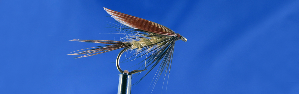 Wet fly dark brow wing, trout fly, wet fly fishing