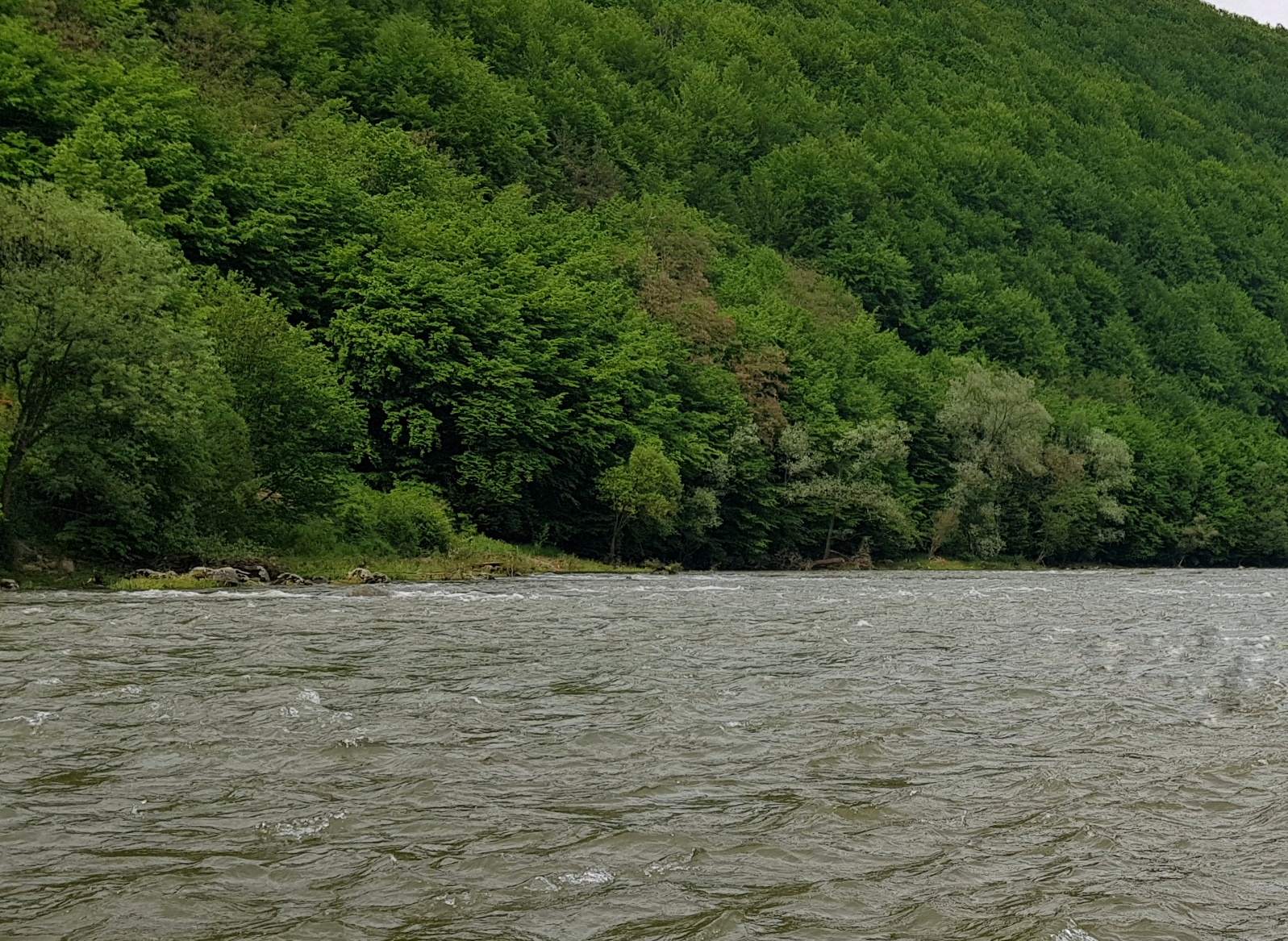 Rapids - ideal for wet fly fishing