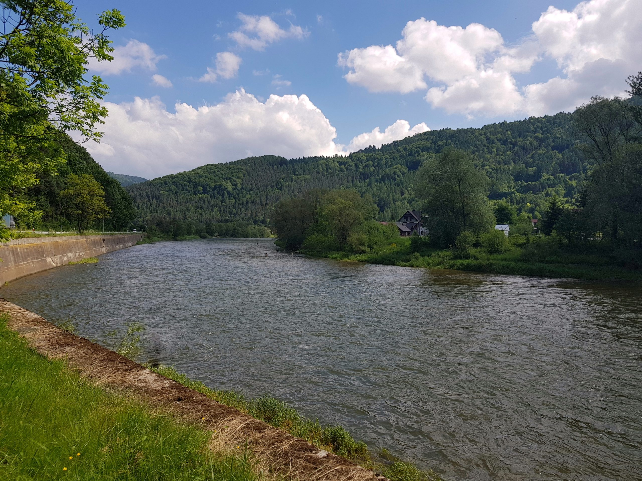 Paradise for streamer for trout and Hucho-hucho