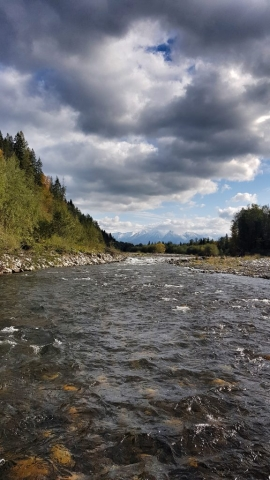 Rapids for grayling and trout fly fishing in Poland