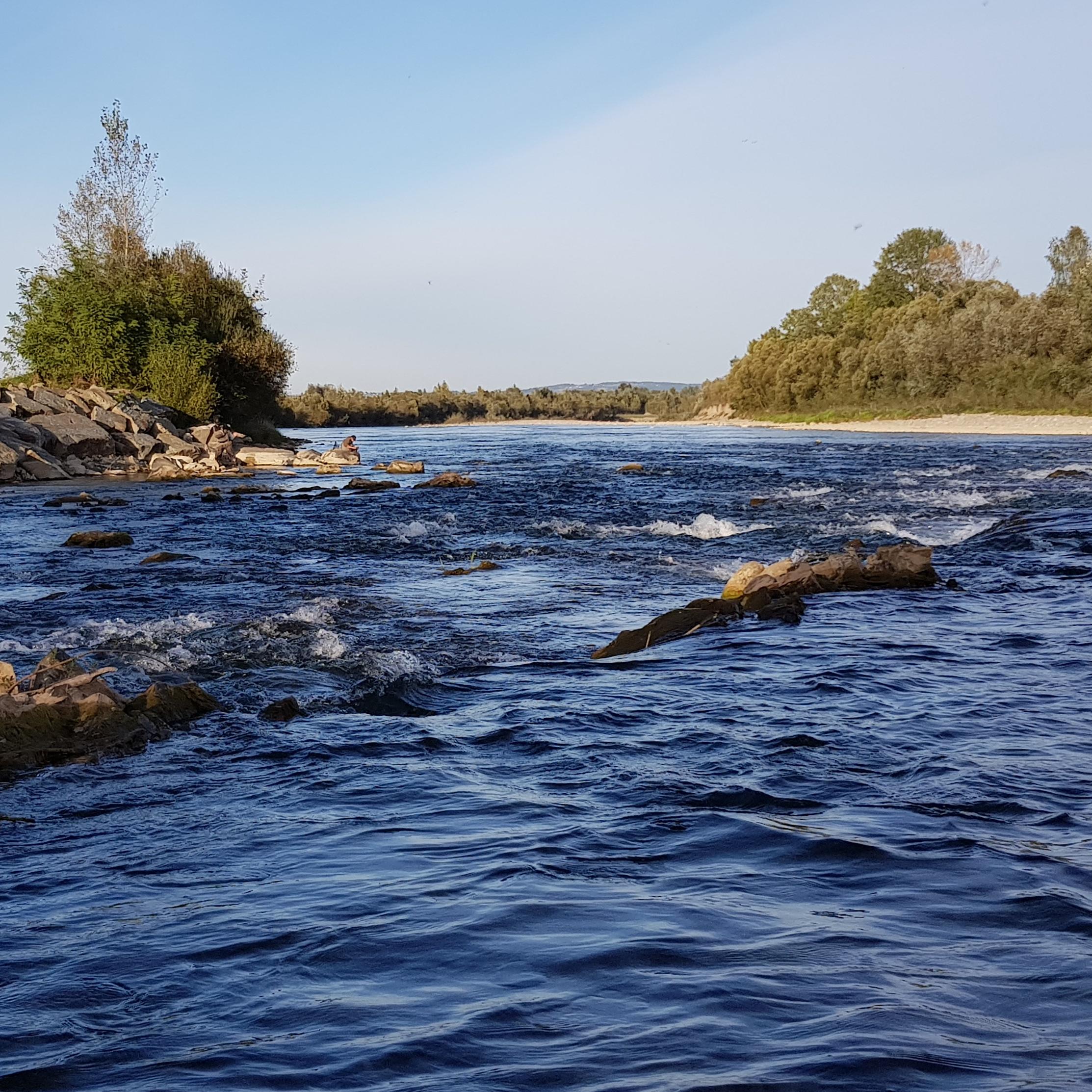 No kill zone - trout, grayling, Hucho-hucho and barbel area