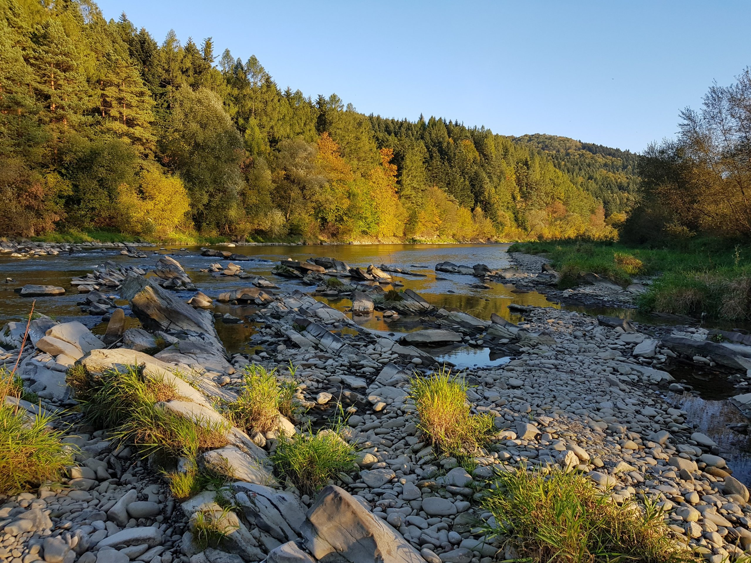 Catch & release stretch, perfect for dry fly fishing in autumn