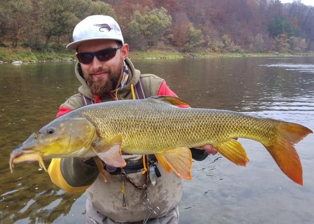 No kill by fly fishin in Poland