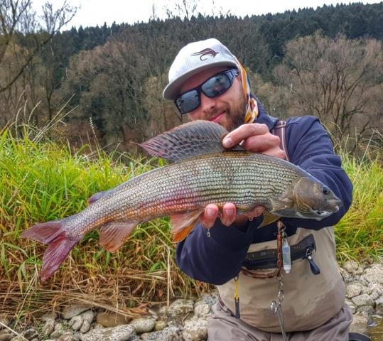 Perdigon fly for grayling - Dunajec River fishing