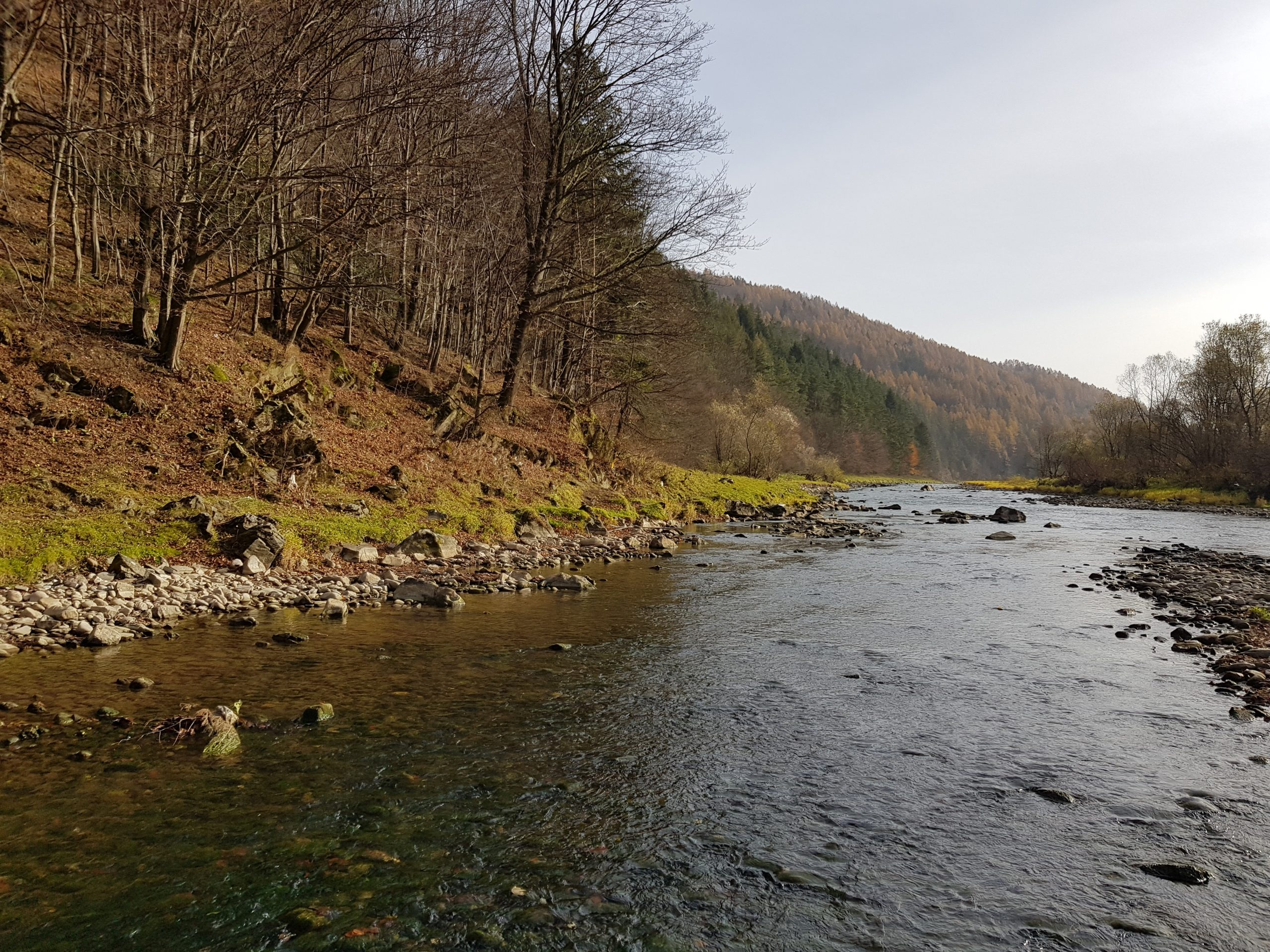 Autumn, low water level ideal for grayling fishing