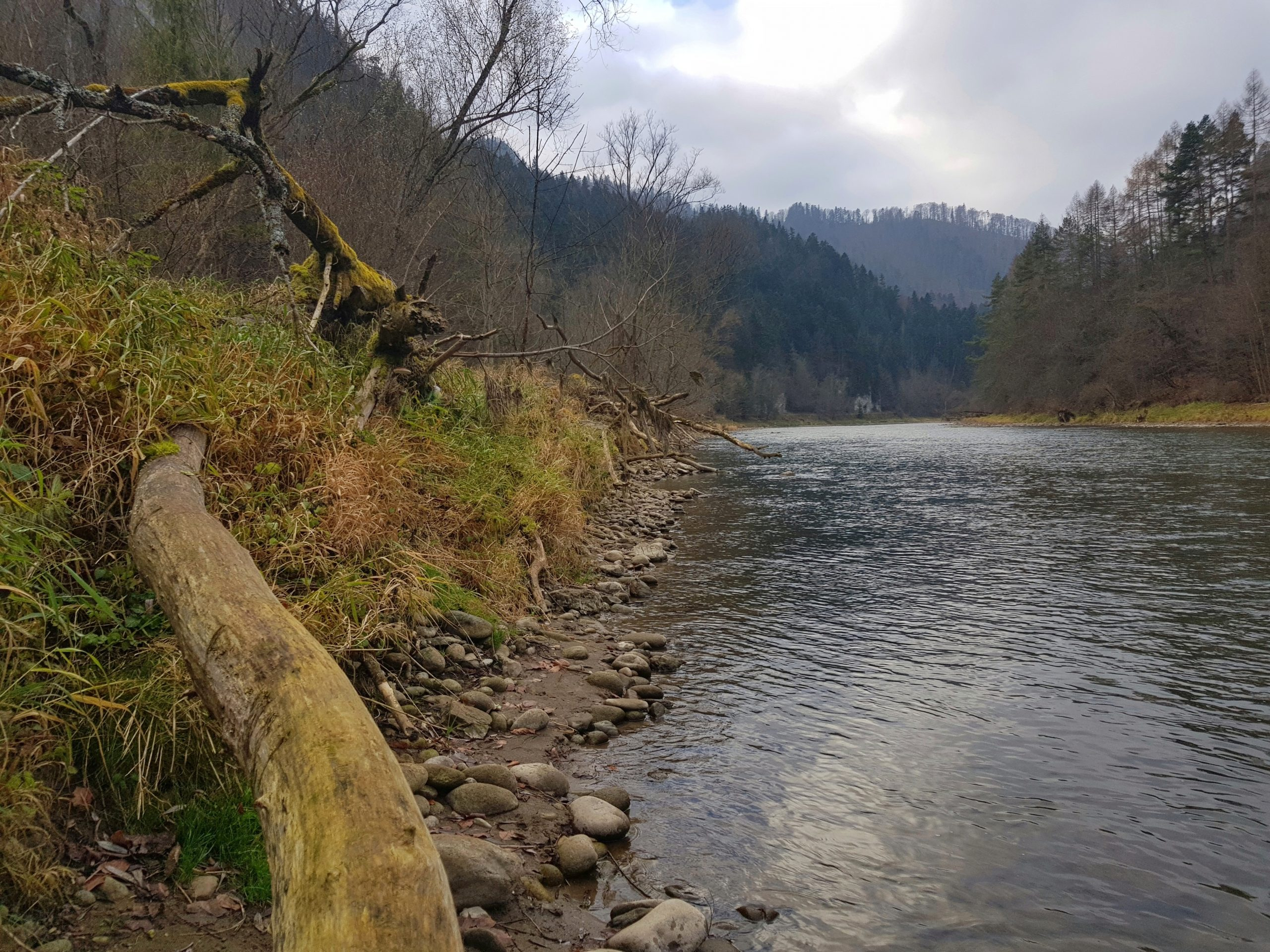 Pieniny National Park - no kill zone, fly fishing in poland