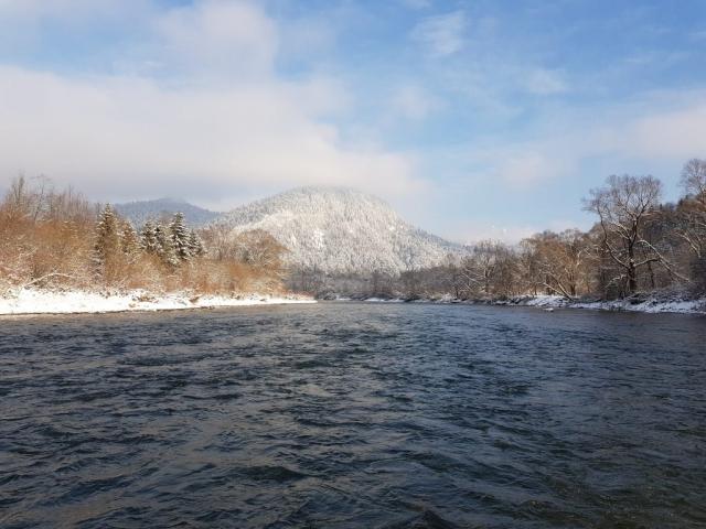 Hucho - hucho (Danube salmon - Taimen) area. Big streamer fishing